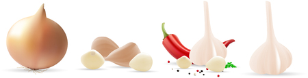 Onion, pepper and garlic. Vector illustration on white background.