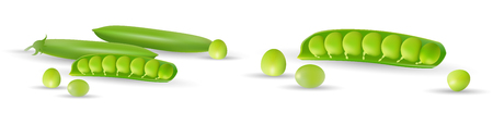 Green peas isolated on white background, set with whole and open peas in pods. Vector illustration