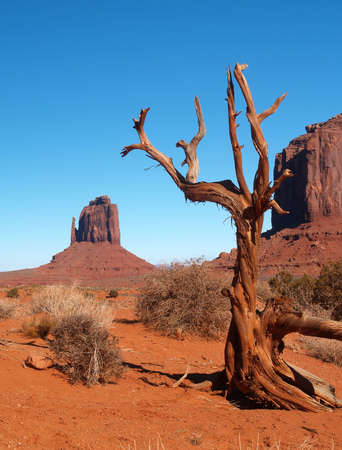 Monument Valley Navajo Tribal Park in Utah Stock Photo - 880412
