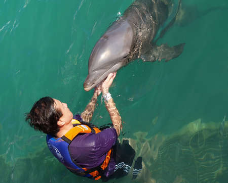 Kiss with dolphin in a beach resort photo