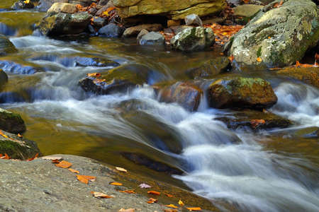 state of mood: a stream in a new jersey state park Stock Photo