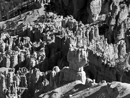 The Bryce Canyon National Park in Utah USA, in black and white  photo