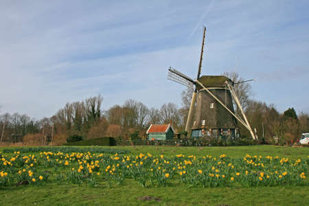 windy energy: The historical windmill in the Dutch countryside