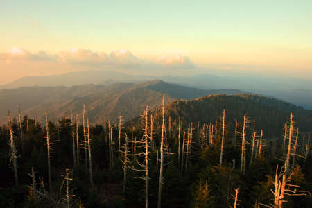 great smoky national park: The Great Smoky Mountain National Park at sunset