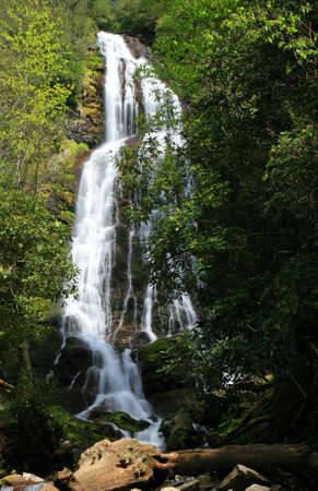 great smoky national park: Mingo Falls in the Great Smoky Mountains National Park in spring