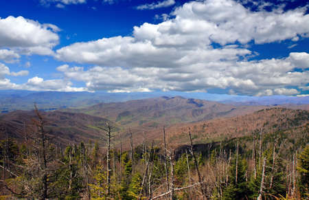 The Great Smoky Mountain National Park in the morning photo