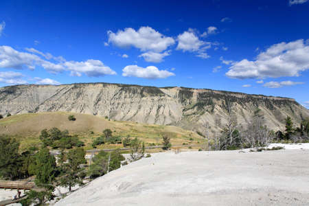 The Mammoth Hot Spring area in Yellowstone National Park in Wyoming  photo