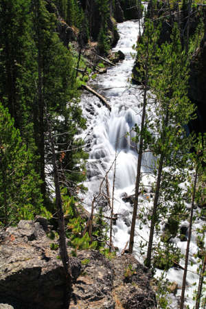 The Kepler Cascades in the Yellowstone National Park photo