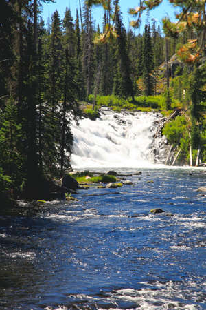The Lewis Falls in the Yellowstone National Park photo