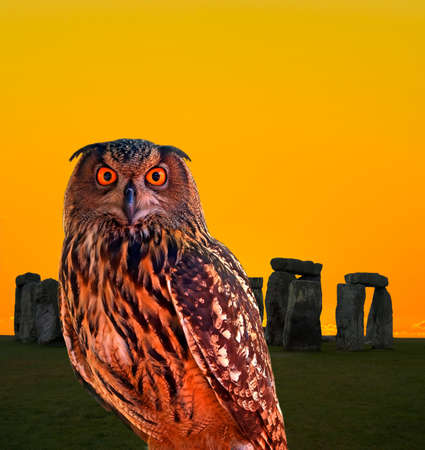 sunligh: an owl and the mystery Stonehenge in England