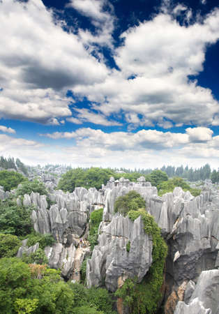 kunming: Rock forest near Kunming city China