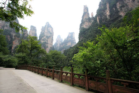 magnificence: The scenery of the China national forest park - Zhangjiajie