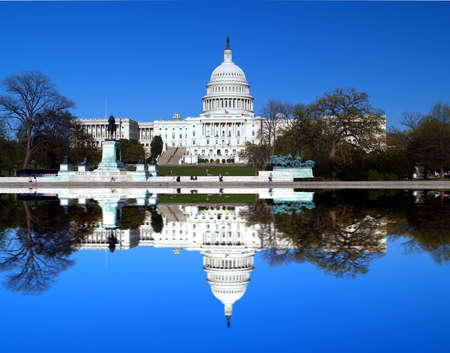 unites: The Capitol building in Washington D.C with symmetric reflection