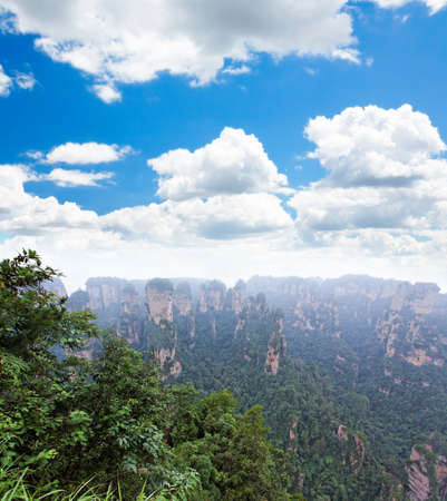 The breathtaking landscape in ZhangJiaJie a national park in China    Stock Photo