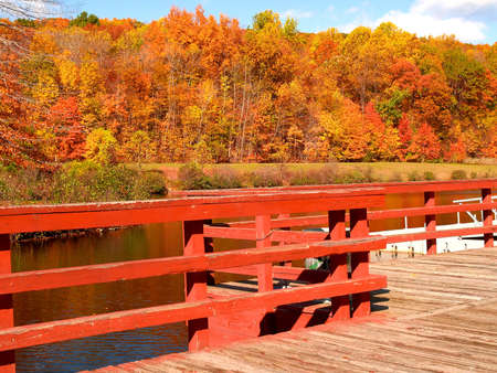 The colorful foliage landscape in New Jersey photo