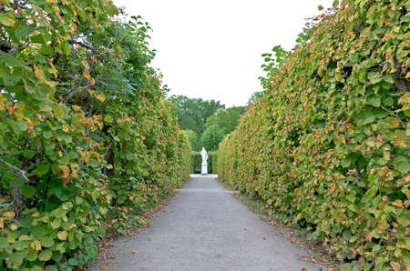 The royal garden of Drottningholms Palace in the Stockholm city, Sweden