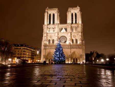 De beroemde Notre Dame bij nacht in Parijs, Frankrijk