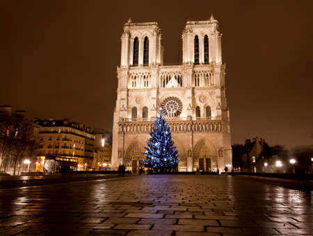 The famous Notre Dame at night in Paris, France photo