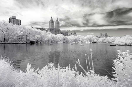 Infrared image of the Central Park in Manhattan