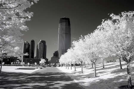 Infrared image of the office buildings and  Liberty Park in NJ