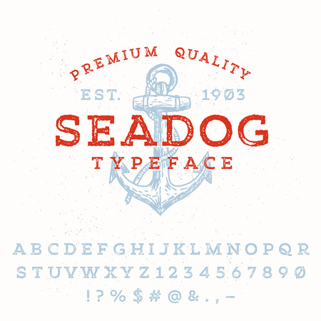 display type: Vector handmade font. Vintage styled grunge textured typeface. Latin alphabet letters and numbers.