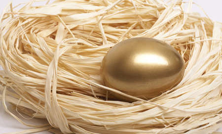 Gold egg in nest close-up Stock Photo - 4139544