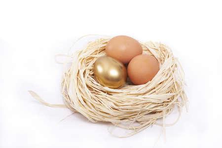 Golden egg in nest concept Stock Photo - 4139542