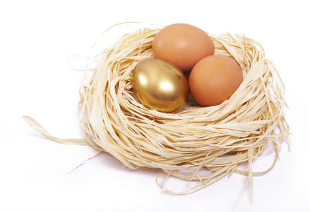 Golden egg shines in a nest photo