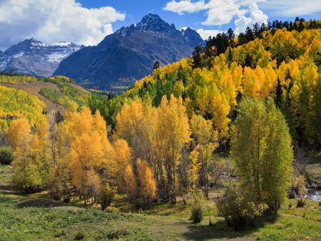 Colorful Colorado. Autumn on the Dallas Divide.
