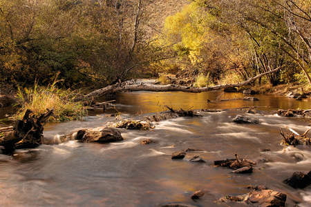 Bear Creek Rapids in Autumn. The Scenic Beauty of Colorado.