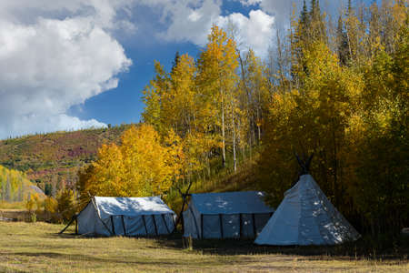 Campsite in the San Juan Mountains. Golden Leaves of Aspen Trees in the Beautiful Rocky Mountains of Colorado.