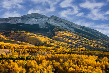 Beckwith Mountain on Kebler Pass. Golden Leaves of Aspen Trees in the Beautiful Rocky Mountains of Colorado.