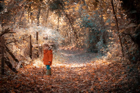 07/01/2020 Portsmouth, Hampshire, UK a small boy standing alone in a forest in Autumn or fall Sajtókép