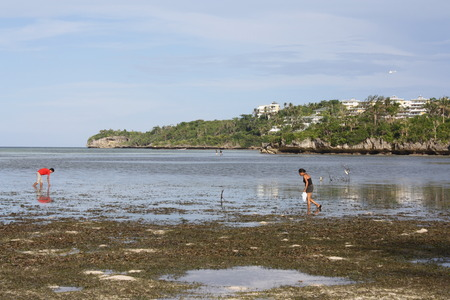 Children playing during low tide