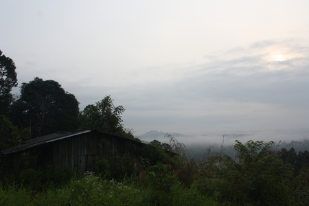 unkept: Evening view from hill top