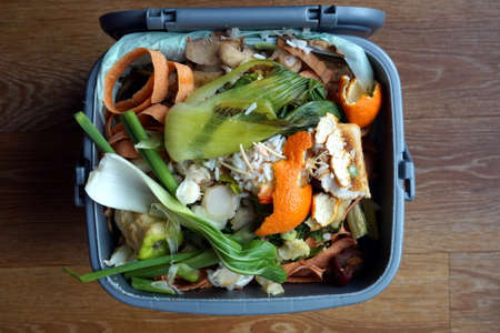 decompose: Container of domestic food waste, ready to be collected by the recycling truck