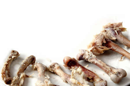 chest cavity: Chicken bones with meat scraps on a white background
