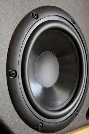 woofer: Woofer or bass cone of a high end hi-fi speaker cabinet
