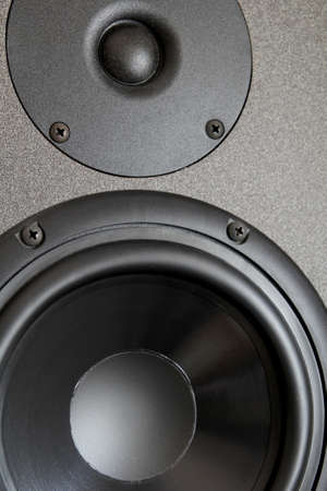 woofer: Woofer or bass cone, and tweeter of a high end hi-fi speaker cabinet Stock Photo