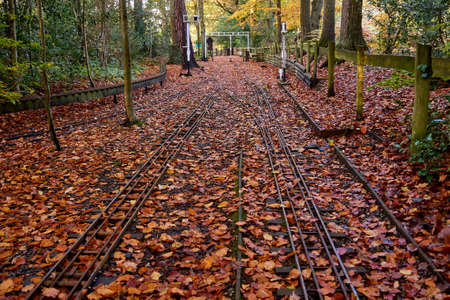 Miniature railway track covered in autumn or fall leaves Stock Photo