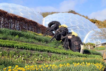 Bodelva, Cornwall, UK - April 4 2017: Giant bee sculpture and biomes at the Eden Project Environmental exhibition in Cornwall, England