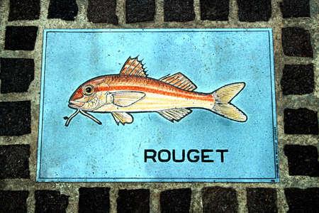 ポート フレジュス、depiicting「Rouget ゴシキドリ」、ヒメジ、波止場にフレジュス、プロヴァンス、フランス - 2016 年 8 月 18 日: 装飾的な敷石 報道画像