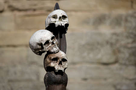 Three human skulls attached to a wooden spike with stone castle wall in background.