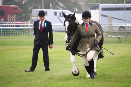 Guildford, England - May 28 2018: Equestrian competitor in a county show, being watched by a critical judge while she runs with her piebald horse