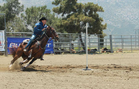 Banning, California, USA - May 5, 2012: A cowboy races through the pole bending competition at the Palm Springs 2012 Hot Rodeo