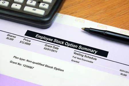 Employee Stock Option Summary