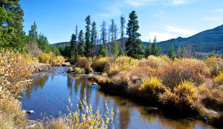 pine creek: The big Thompson river as it makes its way through Rocky Mountain National Park, Colorado
