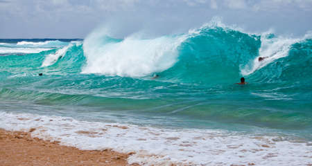 Body Surfers take to the shore break at Oahu s Sandy Beach Park, Hawaii  版權商用圖片
