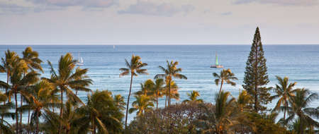 Early morning on Waikiki beach as seen from a resort tower  Oahu, Hawaii photo