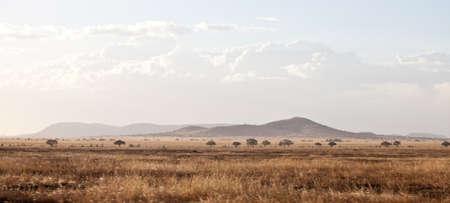 山脈とタンザニア セレンゲティ国立公園の谷の広角ビュー